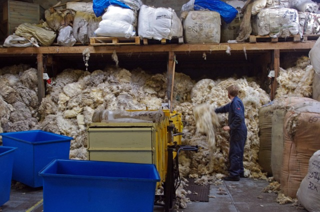 Derek (who will not thank me for taking his picture!) sorts through some of the 3 tonnes of wool coming in per day