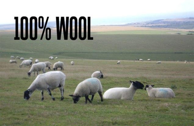 100_percent_wool