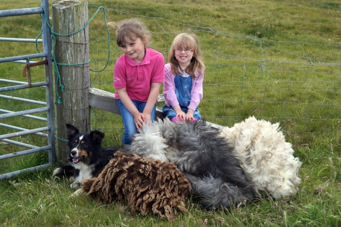 Jan's nieces Keiva and Arianna with Sally the dog and some coloured Shetland fleeces